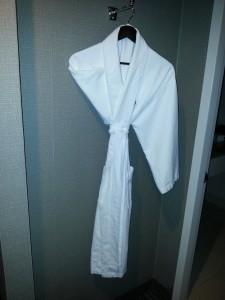Sheraton Gateway Los Angeles Airport hotel robe delta points blog